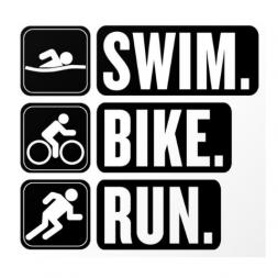 swim-bike-run endurance